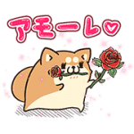 【無料スタンプ】アモーレ♡ボンレス犬&ボンレス猫|配布期間は2016年8月10日(水)まで