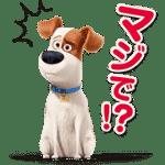 【無料スタンプ】ペット|配布期間は2016年8月22日(月)まで