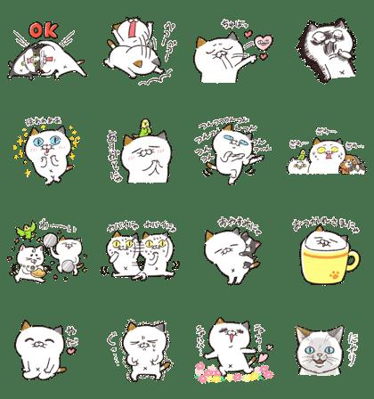 ゆるっとタマ川ヨシ子(猫)第17弾