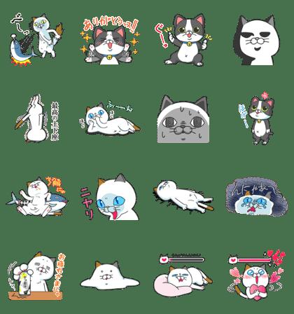 令和初!タマ川ヨシ子(猫)第18弾