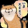 可愛い嘘のカワウソ 【お話きっかけ編】