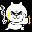 目ヂカラ☆にゃんこ×金氏高麗人参