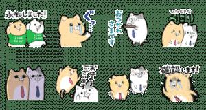 CX DAY × 泣きむし猫のキィちゃん