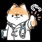 【無料スタンプ】ほんわかしばいぬ × LINEヘルスケア|配布期間は2020年8月26日(水)まで