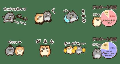 ボンレス犬と猫 | LINEアンケート